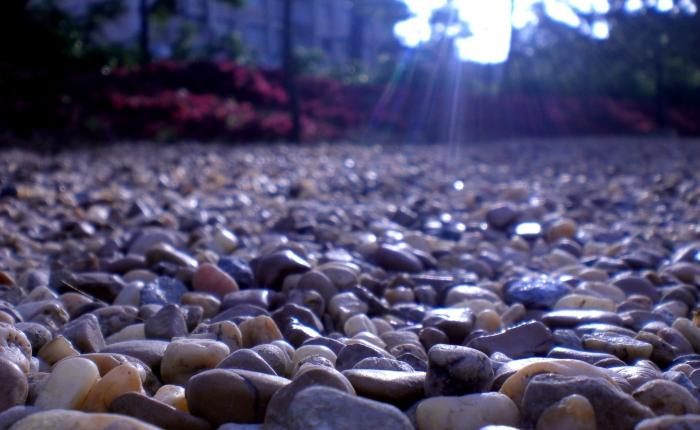 La mateixa pedra